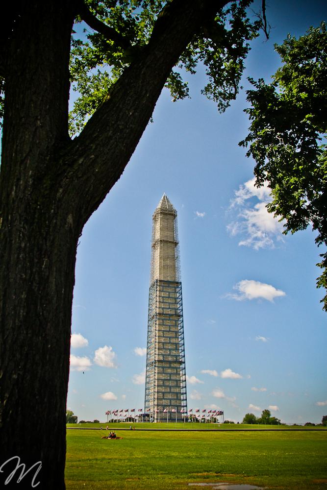 Washington DC day trip